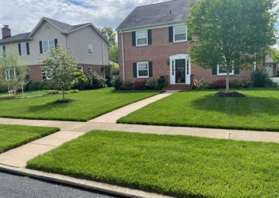 home with newly sodded lawn