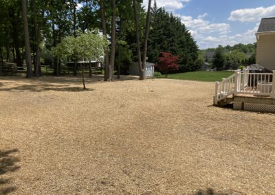 Large meticulously seeded lawn by Frederick Landscaping