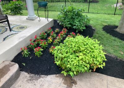 planting and mulching flower beds